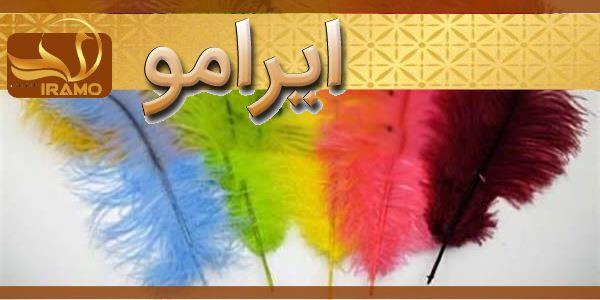 قیمت پر شترمرغ در اصفهان