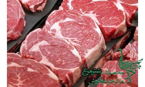 گوشت شترمرغ تازه ارزان
