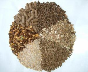 تولیدی انواع خوراک شترمرغ